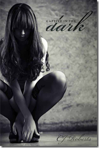 captive-in-the-dark-cj-roberts