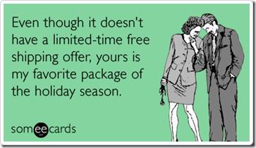 package-flirting-sex-free-shipping-christmas-season-ecards-someecardsa